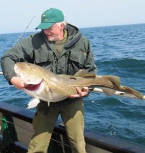 2011 - pæn torsk fra Det Hvide Rev